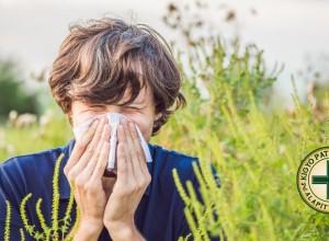 Dübörög a parlagfűszezon – így védekezzen az allergia ellen.